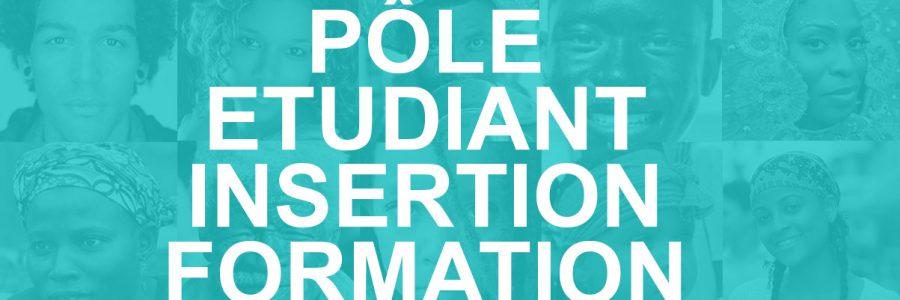 Un Pôle étudiant, formation et insertion